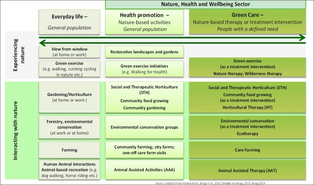 Green Care diagram updated